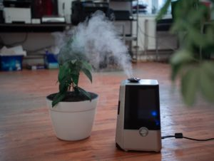 Fix Your Humidifier at Home