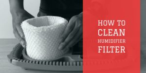 clean humidifier filter