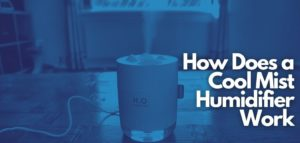 how does a cool mist humidifier work
